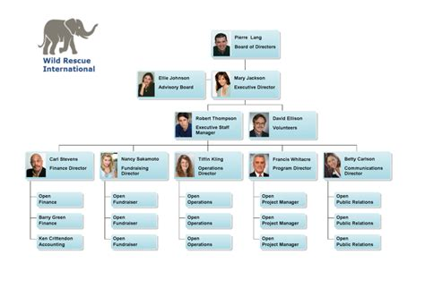 board of directors organizational chart template 28