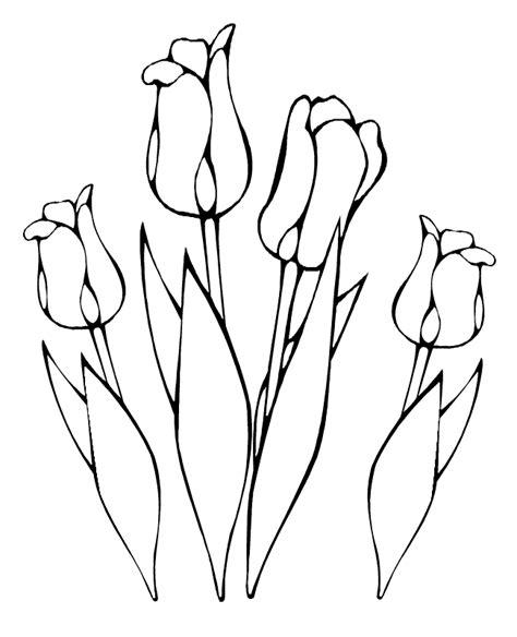 ramo flores desenhos colorir