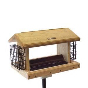 Lowes Bird Feeders Shop Birds Choice Cedar 5 Quart Hopper Bird Feeder At