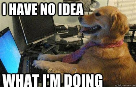 Accountant Dog Meme - les gens ont vraiment demand 233 n importe quoi 224 google