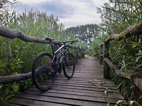 Mtb Cepat Gs Shimano Alivio M4050 1 sup xp29se fotky bike forum cz