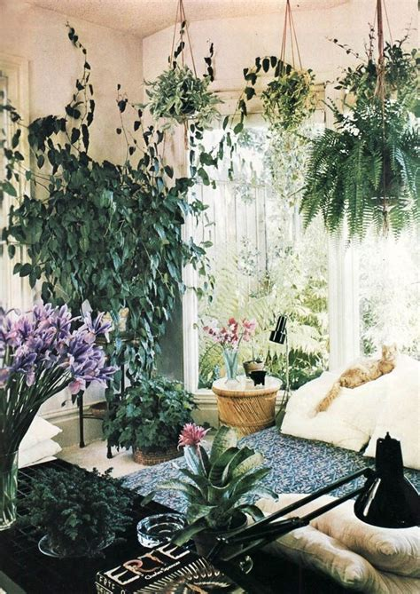 room plants creating a seamless flow between home and garden