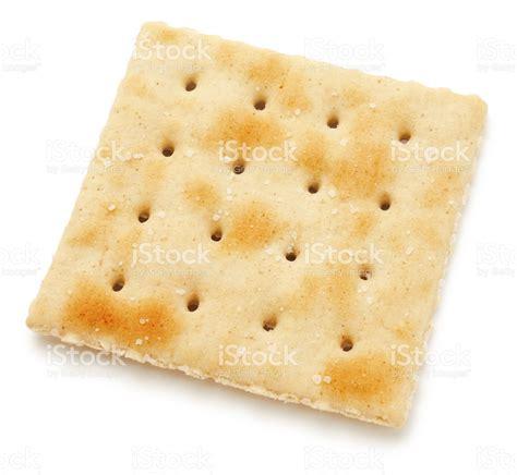 single salted cracker stock photo istock
