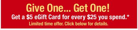 Cvs Gift Card Promotion - cvs 5 bonus with 25 gift card purchase southern savers