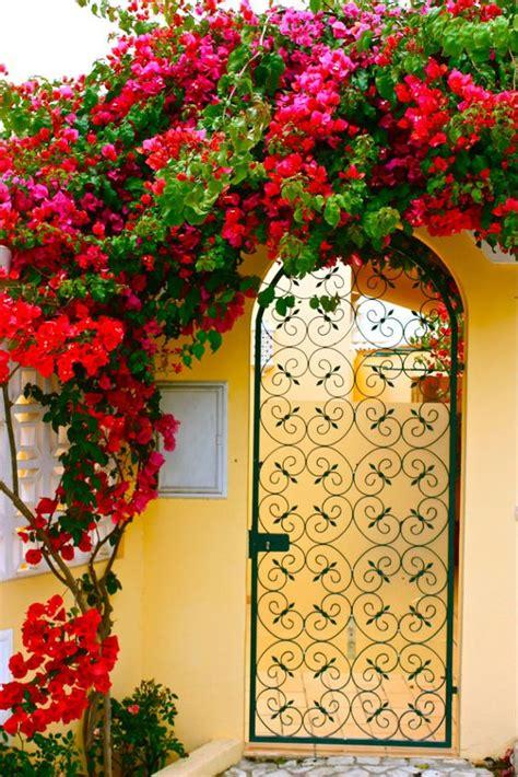 The Olive House Partisi 16 id 233 es d arches fleuries pour 233 gayer jardin femmes