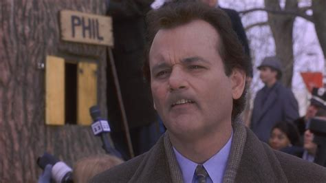 groundhog day 1993 free groundhog day 1993 hd windows wallpapers