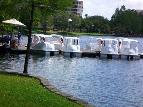 paddle boats lake eola swan paddle boats picture of lake eola park orlando