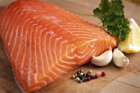 salmon food bodycare plus