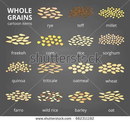 whole grains images with names minur s portfolio on