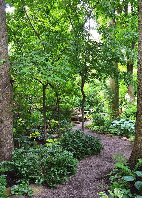 25 trending forest garden ideas on garden