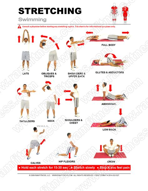 printable hip flexor stretches 13 swimmers stretches pdf file plus tracking guide