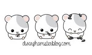 Hamster robo dwarf hamster russian dwarf hamster siberian hamster