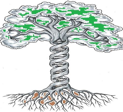 what is the significance of tree the significance of tree of williams medium