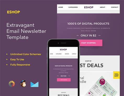 Email Marketing Template For E Business Zippypixels Marketing Email Template Sle