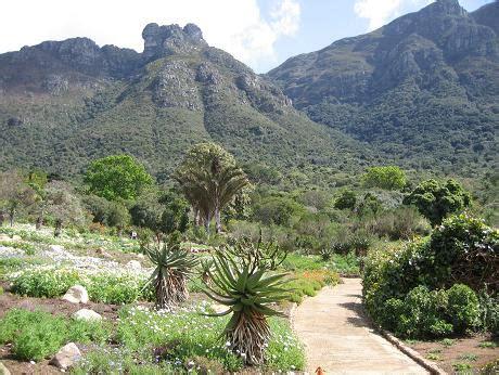 Botanical Gardens Cape Town Kirstenbosch Cape Town Botanical Gardens