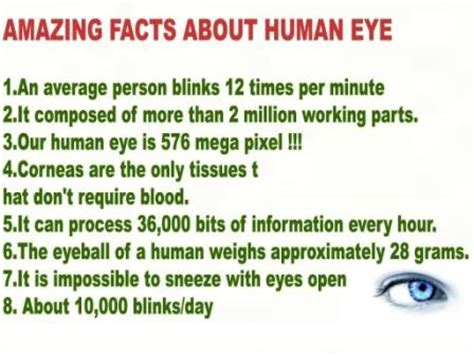 Light Gray Shades by 10 Interesting Facts About Eyes Whatthafact Com