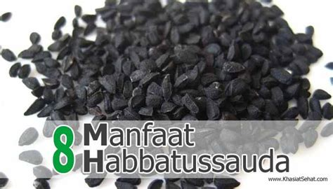 manfaat habbatussauda  jinten hitam  kesehatan