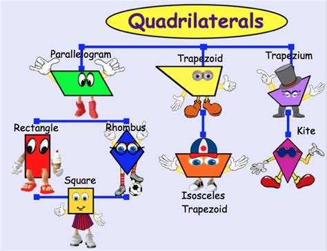 lots  pins  quadrilaterals family tree