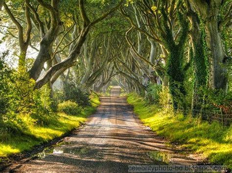 oo nina bobo film review world s top most amazing beautiful natural scenes photos