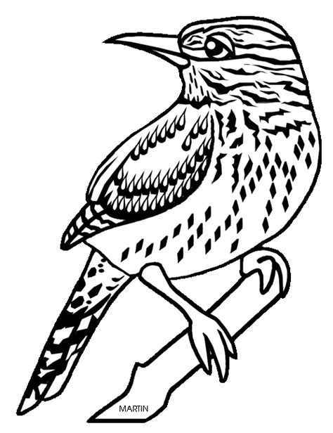 Arizona State Bird Coloring Page united states clip by phillip martin state bird