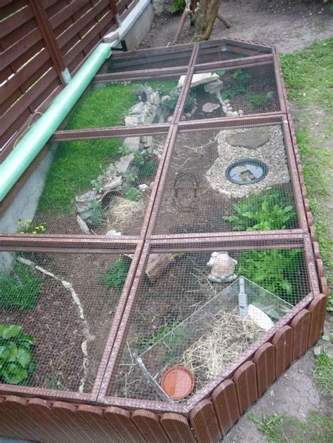Best 25 Outdoor Tortoise Enclosure Ideas On Pinterest Garden Enclosure Ideas