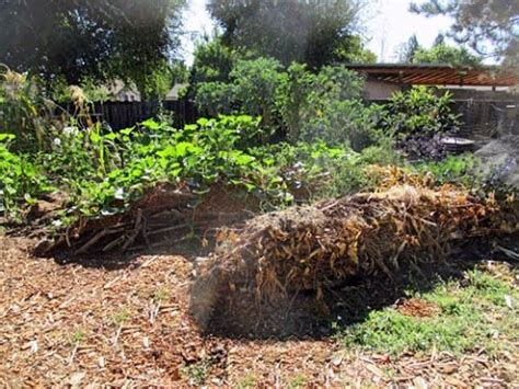 How To Make A Raised Garden Bed Backyard Hugelkultur Beds To Grow Food And Sequester