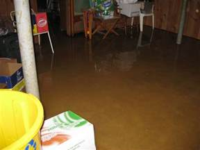 who to call for water in basement basement waterproofing call 647 360 2216 leaky basement