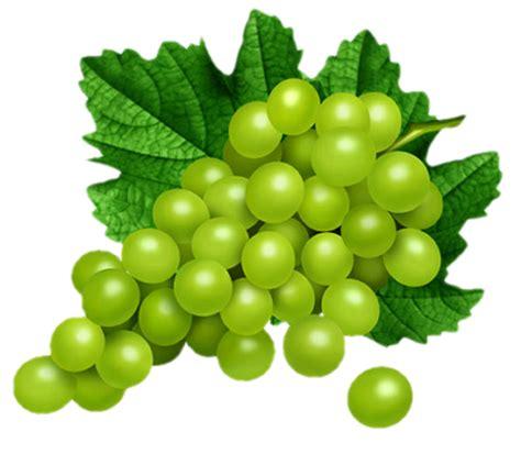 imagenes de uvas sin fondo owoce