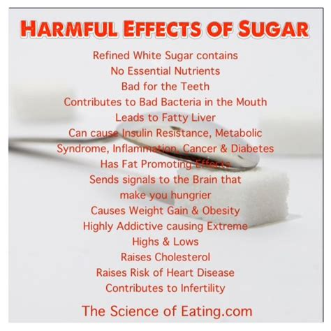 holistic fixes for your bad health habits doctor oz 1000 images about this toxic world we live in on