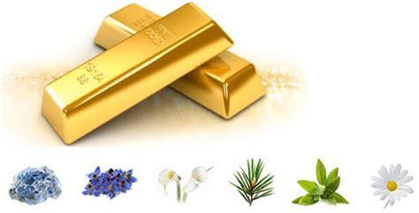 Premium Gold Mineral Pact 엘리샤코이 프리미엄 골드 미네랄 팩트 spf25 pa 엘리샤코이 팩트 재외한국인을 위한 한국쇼핑몰
