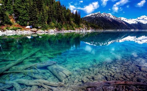 Clearest Water In The Us 4k Nature Wallpaper Wallpapersafari