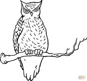 desenho de coruja na 225 rvore para colorir desenhos para colorir e imprimir gratis