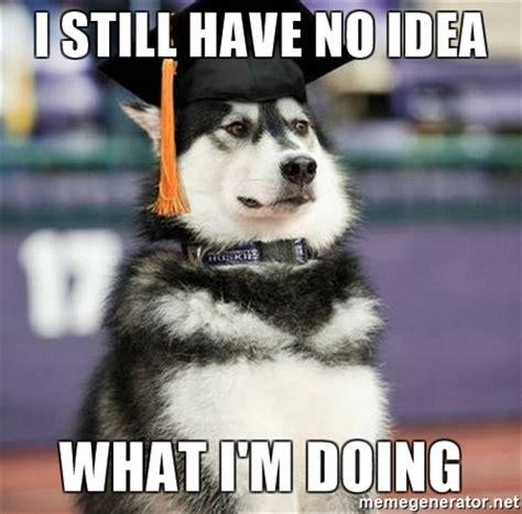 I Have No Idea What Im Doing Meme - i still have no idea what i m doing graduation husky