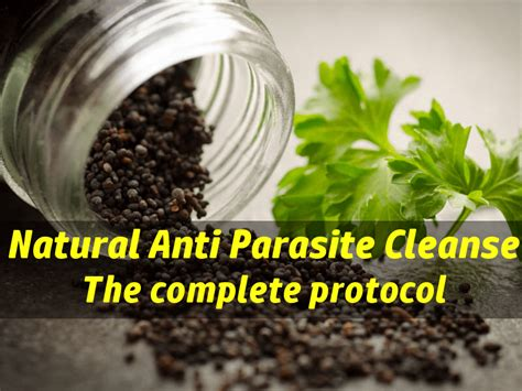 How To Detox Parasites by Herbal Parasite Cleanse Ftempo