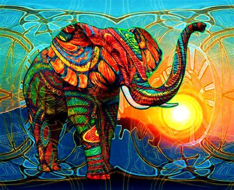 abstract elephant wallpaper hd colorful elephant wallpaper