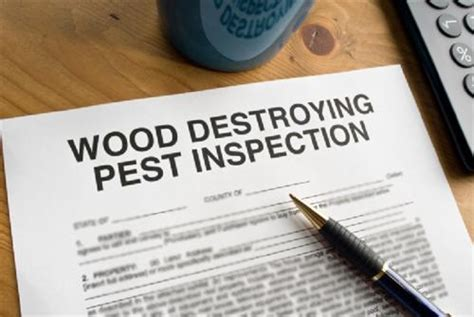 Mortgagee Letter Termite Nyc Pest Realtor Information