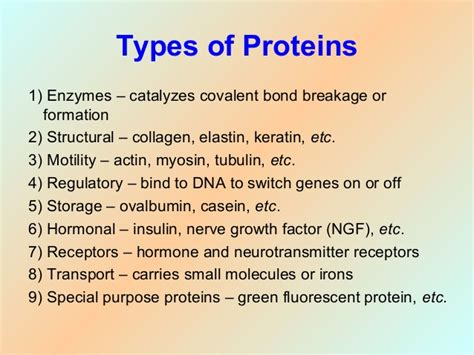 protein biology cell biology