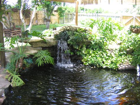 backyard pond design
