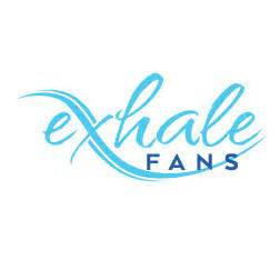 Exhale Fan Review exhale fans 1 reviews amp 2 projects georgetown in