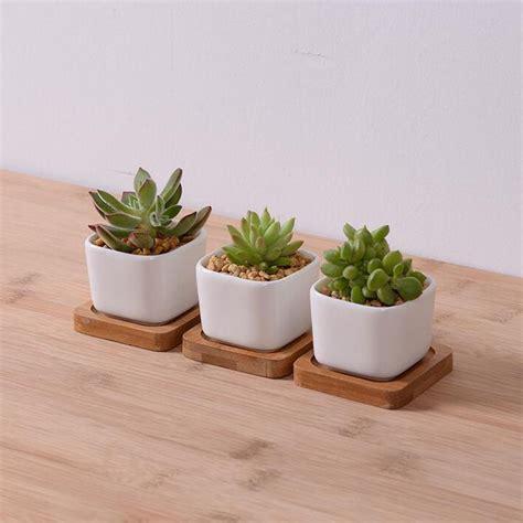 best planters 25 best ideas about rectangular planters on pinterest
