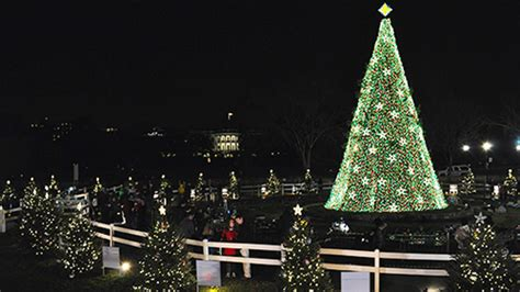 national christmas tree president s park white house