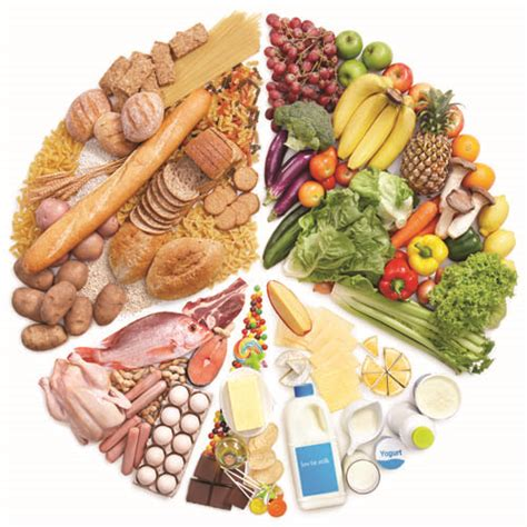 carbohydrates use in living organisms nutrition and food