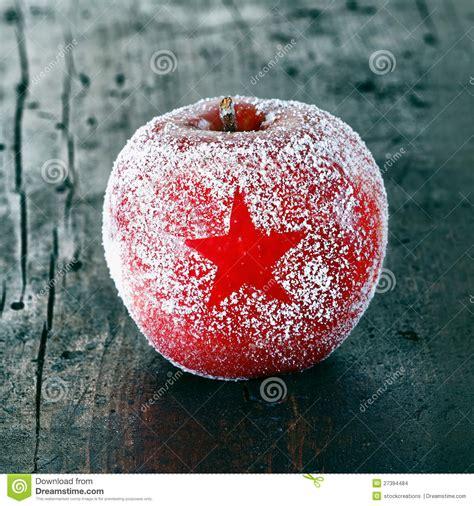 decorative fresh christmas apple stock images image