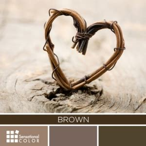 meaning of the color brown all about the color brown sensational color