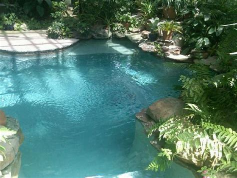 indoor greenhouse pool   Picture of Cat Spring, Texas