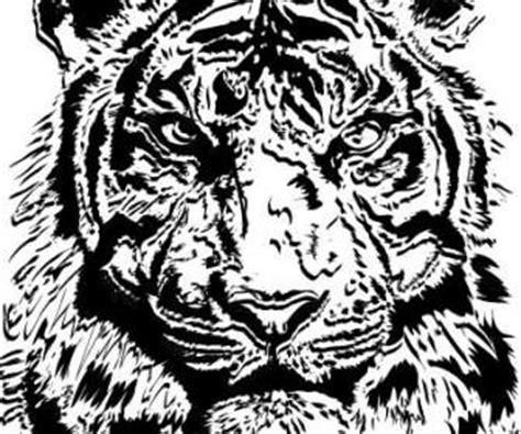 Pola Kulit Macan Harimau vektor hewan vektor gratis gratis page3
