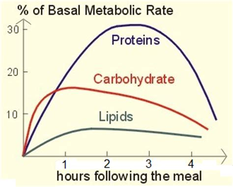 born rate definition skinny without willpower eating protein for fat loss