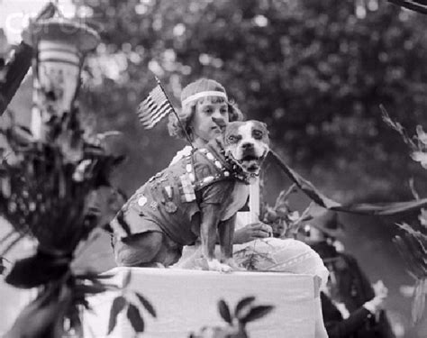 Sergeant Stubby Georgetown Stray Sergeant Stubby Became America S And Most Decorated War