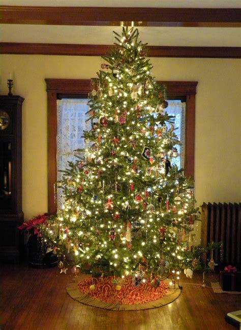 tree tradition sweet posy dreams tree traditions