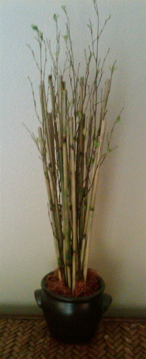 Bamboo Planter Ideas by Diy Bamboo Planter Bamboo Ideas
